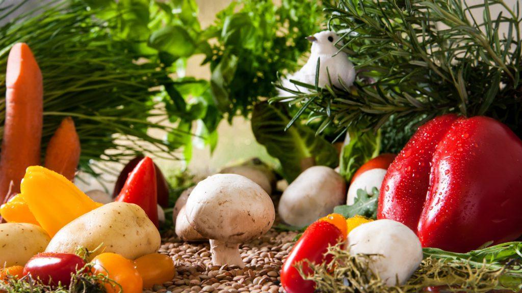 Vitamine Mineralstoffe und Spurenelemente Entgiften
